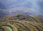 china-longji-rice-terraces-fog