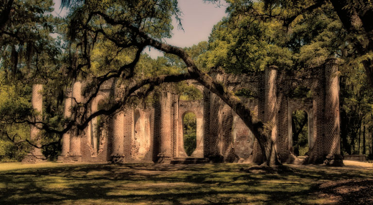 Brick columns shadowed by live oak trees