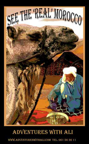 colorful poster for Morocco showing camel and nomad and tent