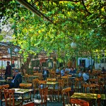 tea garden in Damascus Syria