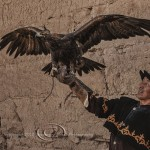 Kyrgyz Eagle Hunter with Golden Eagle wings outstretched