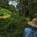 Thailand-jungle-mahout