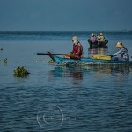 Masked Vietnamese women row their small boat on Tonle Sap Lake